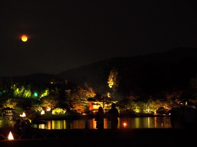 幻想庭園 #2_e0074308_21282246.jpg