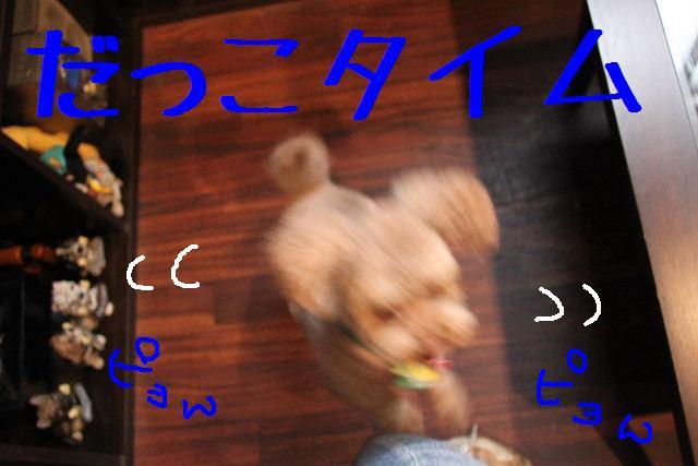 b0130018_9125293.jpg