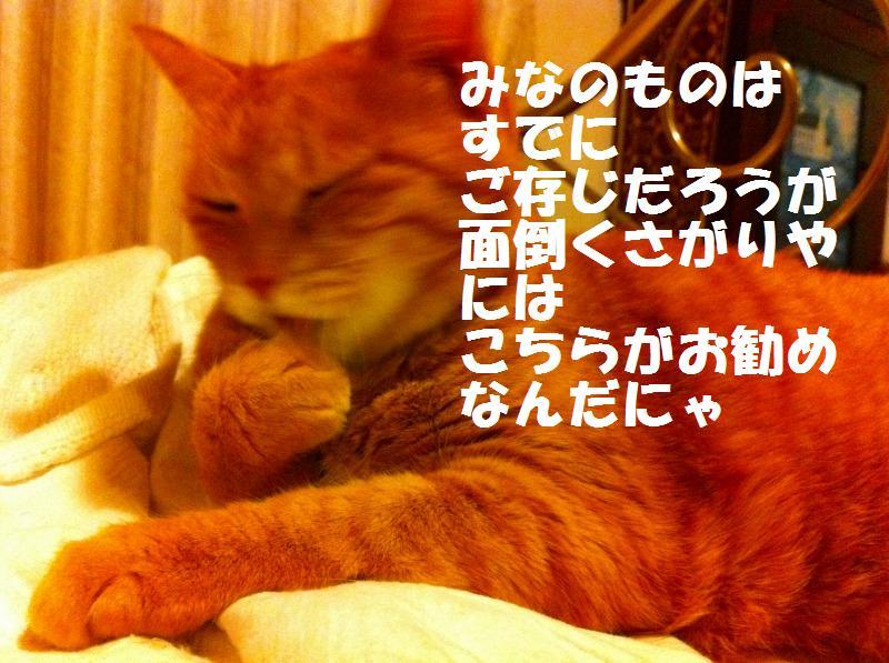 a0147921_20144898.jpg