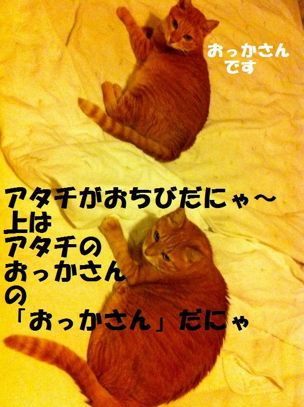 a0147921_2041014.jpg