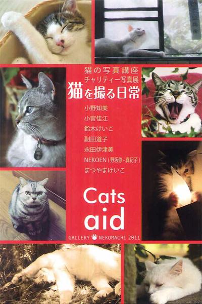 「猫を撮る日常」_c0194541_13235550.jpg