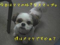 f0067245_18173214.jpg