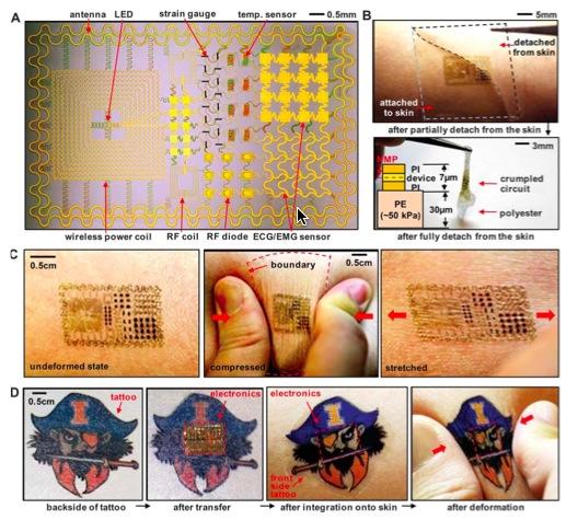 皮膚に貼るシールで生体情報を検知_b0102247_22554593.jpg