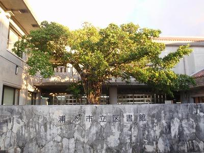 カバマダラと沖縄そば_c0180460_041631.jpg