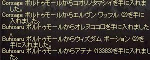 b0048563_1124239.jpg