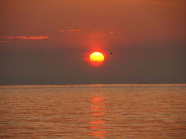 やっぱり前世は海の生き物だったと思う。_d0087270_13161982.jpg