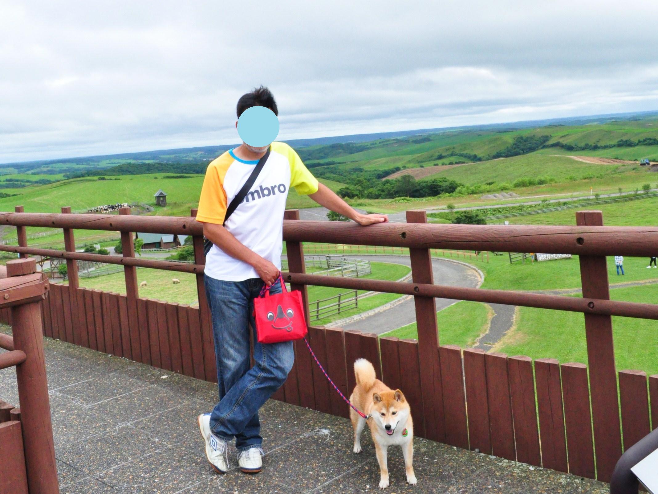 北海道キャンプ⑪ オーチャードグラス_a0126590_13241374.jpg
