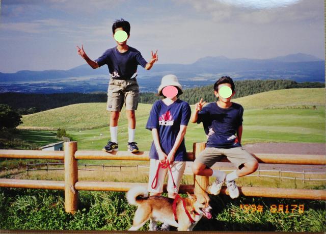 北海道キャンプ⑪ オーチャードグラス_a0126590_1354328.jpg