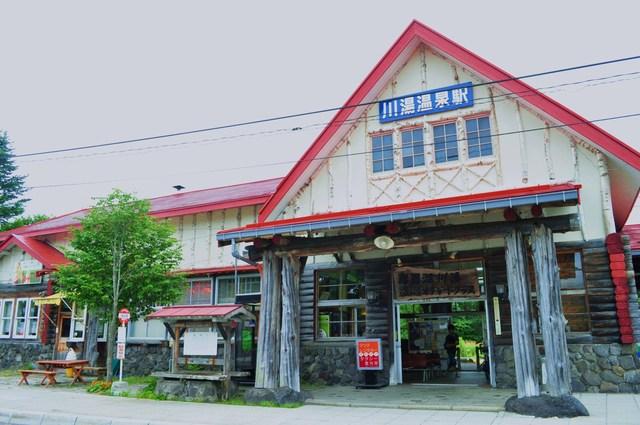 北海道キャンプ⑪ オーチャードグラス_a0126590_200347.jpg