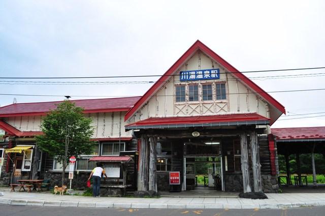 北海道キャンプ⑪ オーチャードグラス_a0126590_21282872.jpg