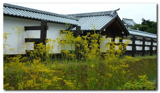 金沢城公園_f0079990_9344476.jpg
