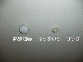 b0003400_18161442.jpg