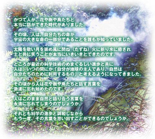 f0086825_023583.jpg