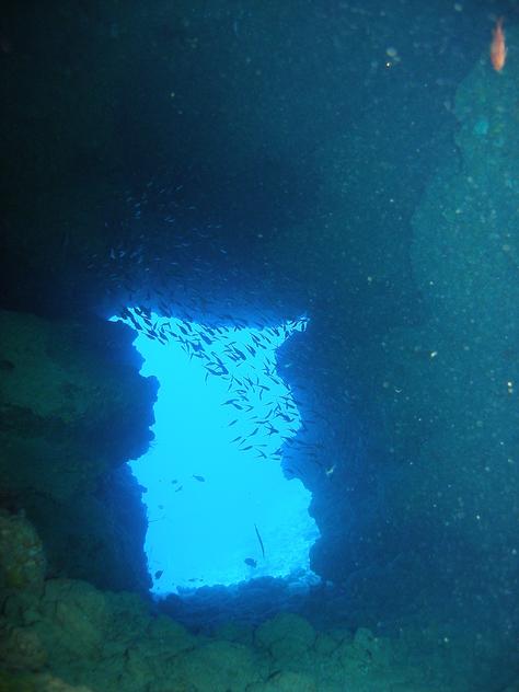 8月20日青の洞窟攻めに水中洞窟♪_c0070933_23421248.jpg