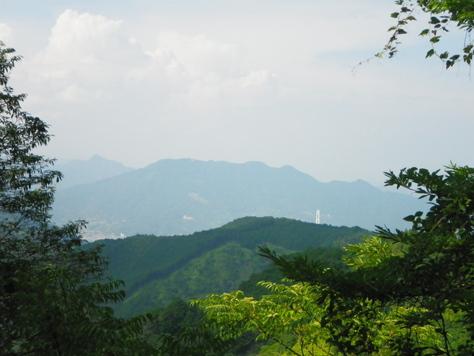 林道を走り、尾鷲市街を山から見下ろしてみる_c0010936_15135583.jpg