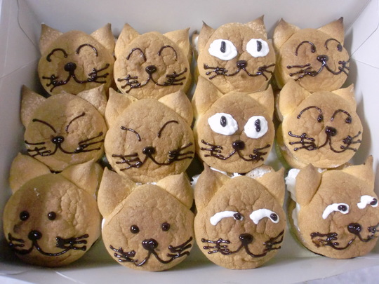 猫カフェ用ケーキ_f0173549_103956.jpg
