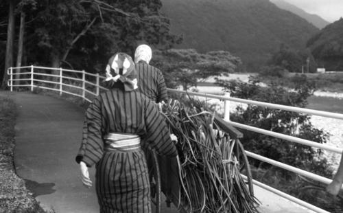 ごんべえ畑の収穫祭☆その6_e0156251_23312457.jpg