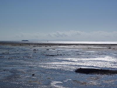 カーミージーの干潟散策_c0180460_1014763.jpg
