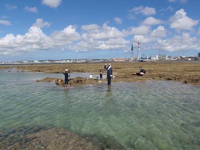 カーミージーの干潟散策_c0180460_9481840.jpg