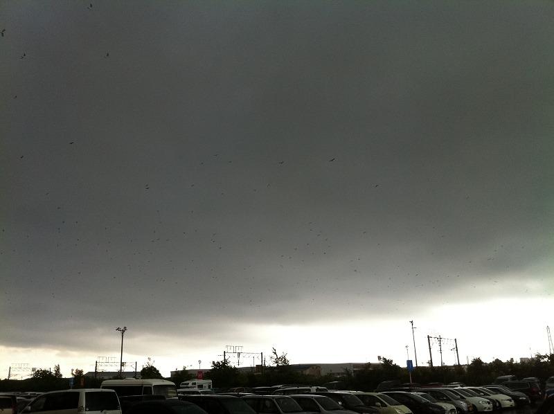 ゲリラ豪雨 イオン駐車場 カラーなんだけど真っ暗_a0160581_15154760.jpg