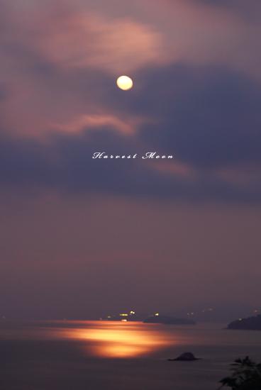 月の威力_b0208495_001434.jpg