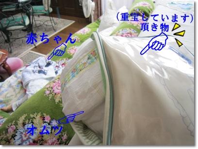 b0167519_9403661.jpg