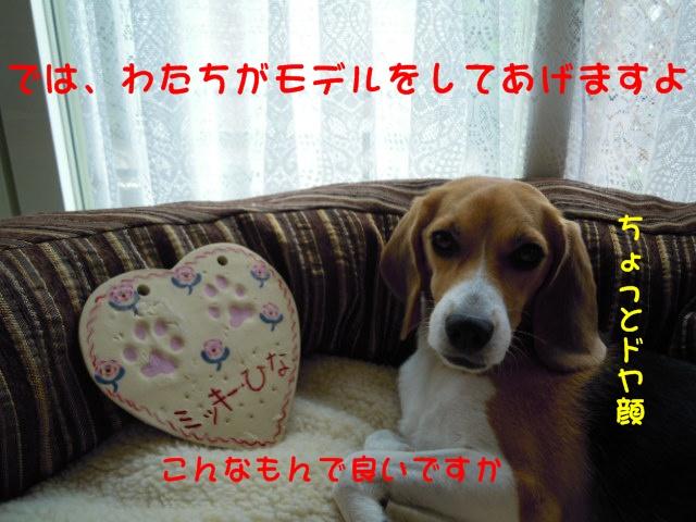 c0166622_14112512.jpg