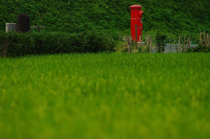 夏の美山かやぶきの里..._f0152550_17484429.jpg
