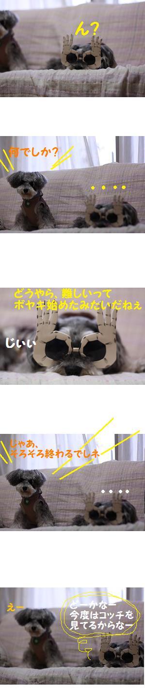 a0230864_12555223.jpg