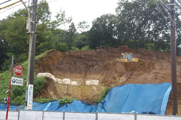 川崎市麻生区の工事現場露頭/ Pleistocene stratum outcrop_a0186568_2145986.jpg