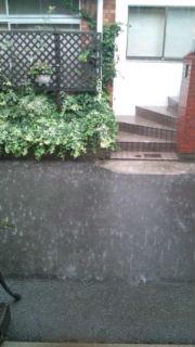 雨音はショパンの調べ_a0059281_1382928.jpg