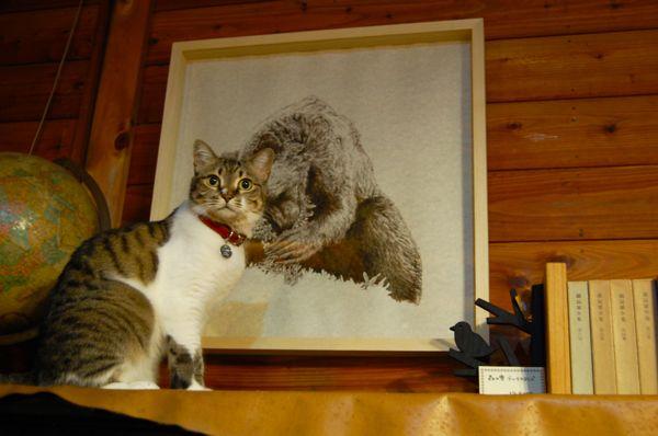 8月21日、猫と熊、アートの祭典。_d0028589_21543969.jpg