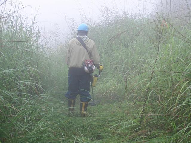 東京から多くの人が参加する富士山国有林の下草刈り_f0141310_7483389.jpg