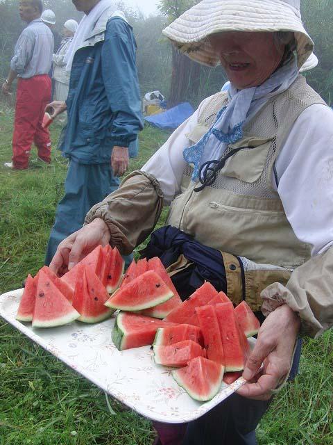 東京から多くの人が参加する富士山国有林の下草刈り_f0141310_755555.jpg