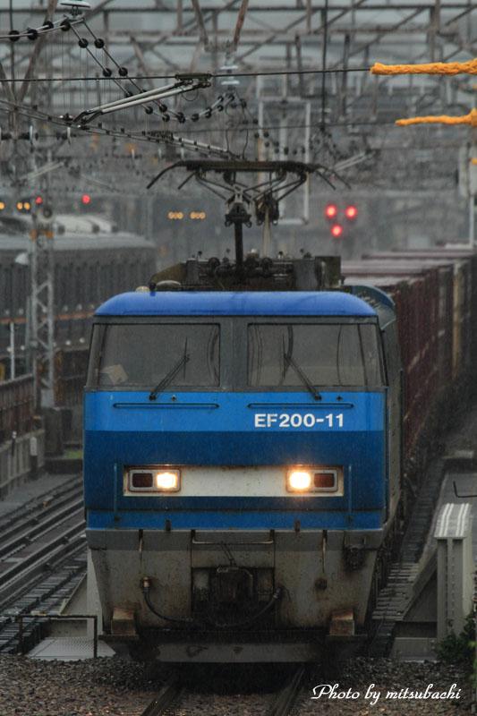 f0204321_20114.jpg