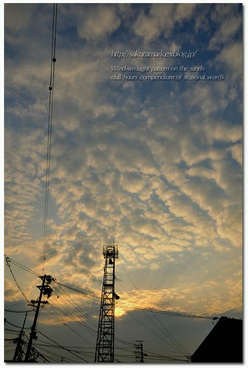 下り坂を告げる高積雲。_f0235723_1949303.jpg