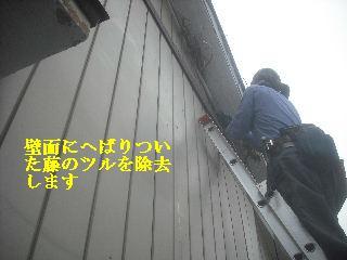 f0031037_2103719.jpg