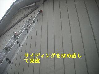 f0031037_2112551.jpg