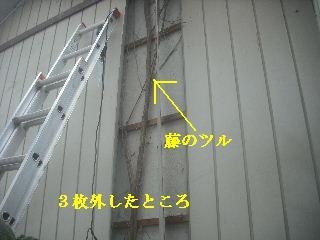 f0031037_211322.jpg