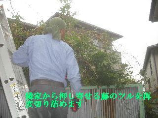f0031037_213990.jpg
