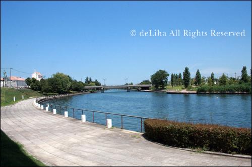 富山環水公園<ラ・シャンス>・ブラッスリーでランチ_c0131054_17104271.jpg