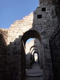 トルコ旅行 数々の遺跡_e0109554_17463172.jpg