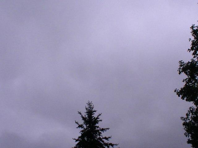 どど曇り_a0140584_124122.jpg