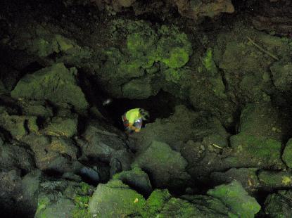 タイムカプセル洞窟_e0077899_6504421.jpg