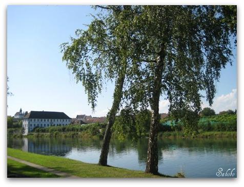 週末旅行 小さな村の教会&ライン川を泳ぐ_b0168823_211434100.jpg