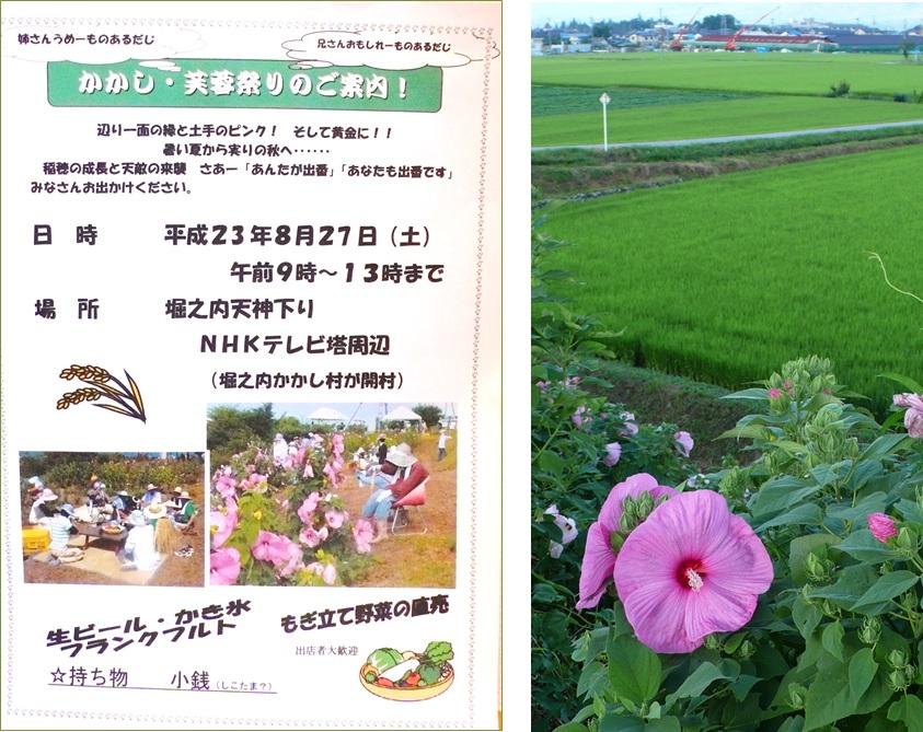 池田町堀の内の かかし芙蓉祭り_a0212730_8122847.jpg