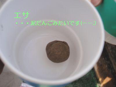 f0196231_20101682.jpg