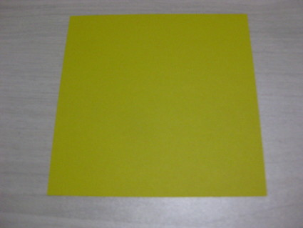 多面体の作り方・・・折り方編_b0063162_017351.jpg
