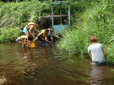 川で遊んだのって初めてー!!_a0096989_2303616.jpg