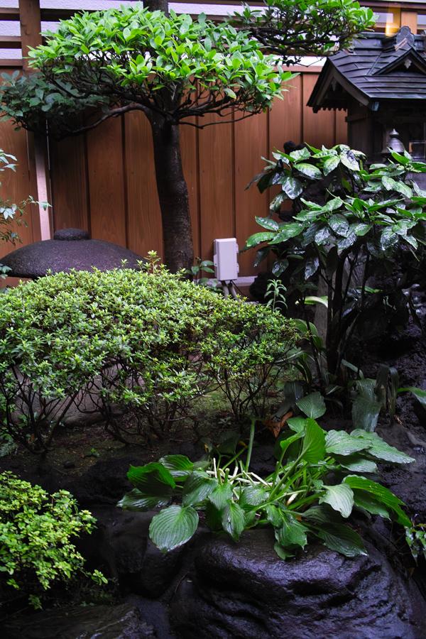 ムシ暑い日には、お蕎麦 ~松戸・関やど~_c0223825_05375.jpg